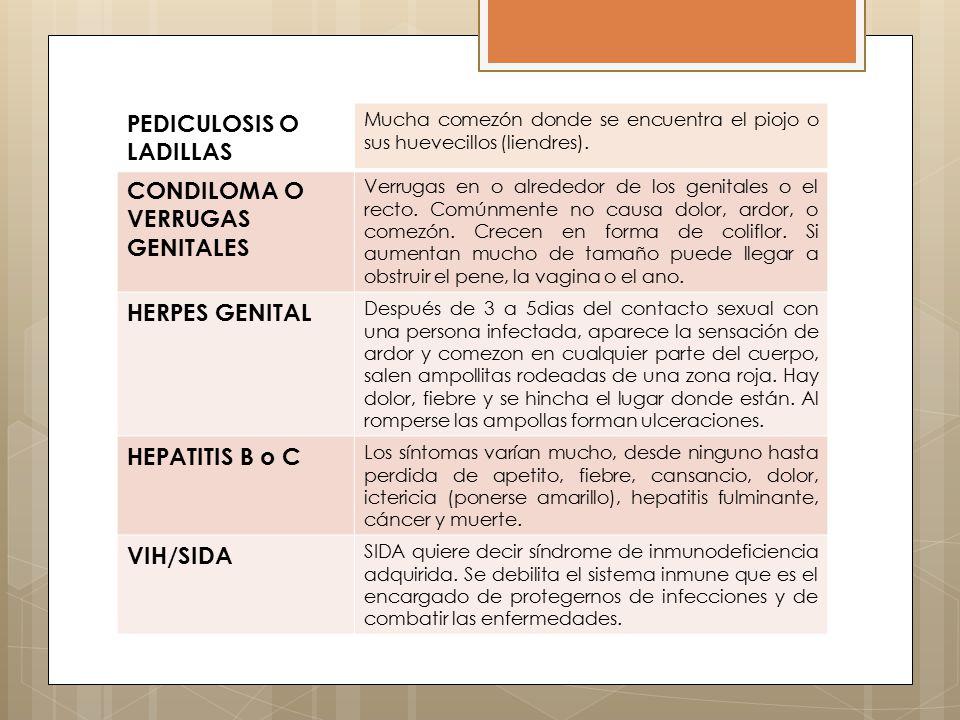 PEDICULOSIS O LADILLAS CONDILOMA O VERRUGAS GENITALES