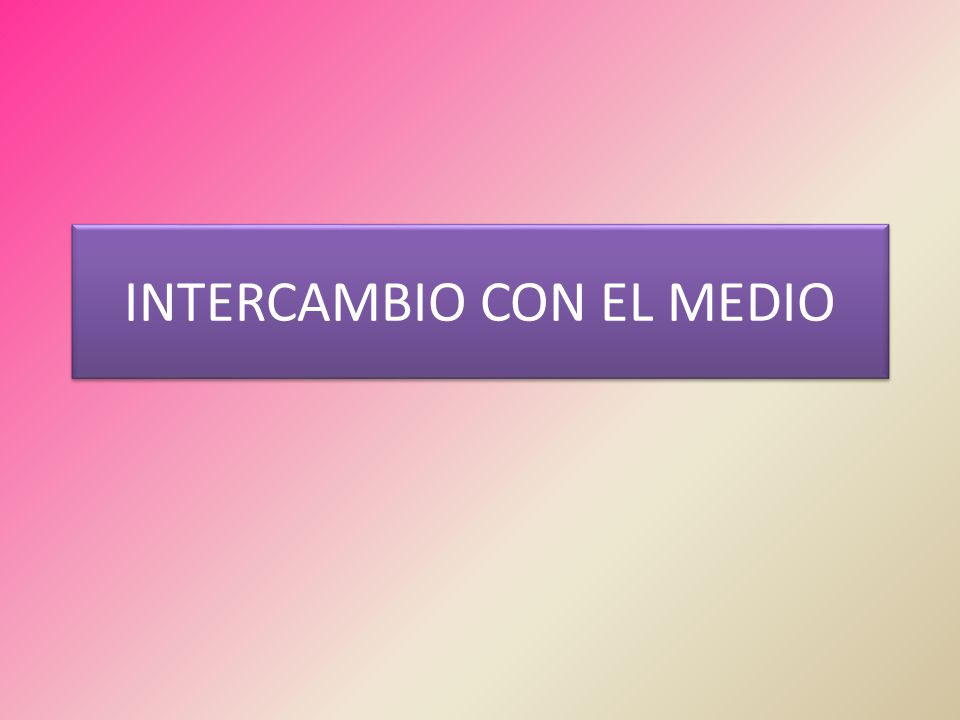 INTERCAMBIO CON EL MEDIO