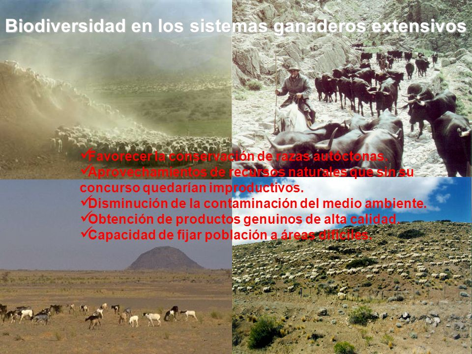 Biodiversidad en los sistemas ganaderos extensivos
