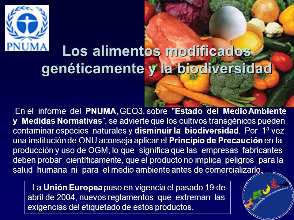Los alimentos modificados genéticamente y la biodiversidad