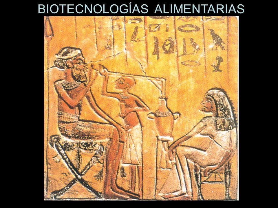 BIOTECNOLOGÍAS ALIMENTARIAS