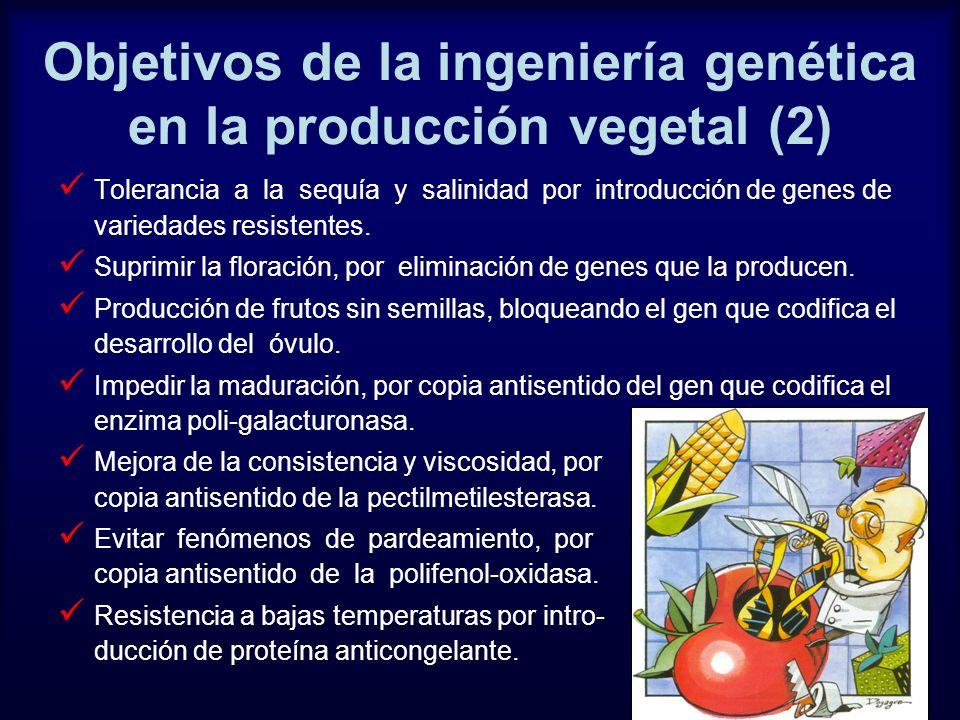 Objetivos de la ingeniería genética en la producción vegetal (2)