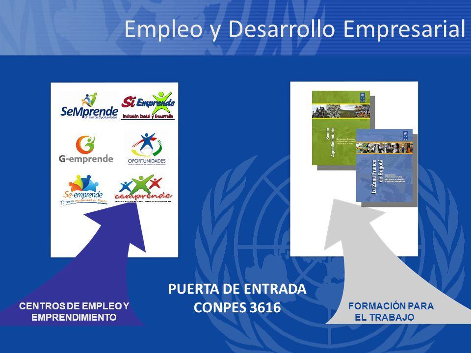 Empleo y Desarrollo Empresarial