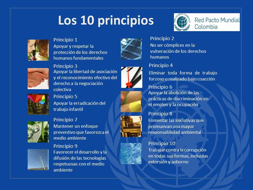 Los 10 principios 23 Principio 2 Principio 1 Principio 4 Principio 3