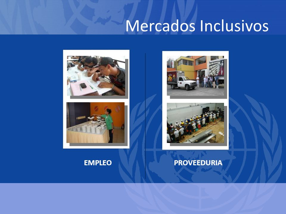 Mercados Inclusivos EMPLEO PROVEEDURIA