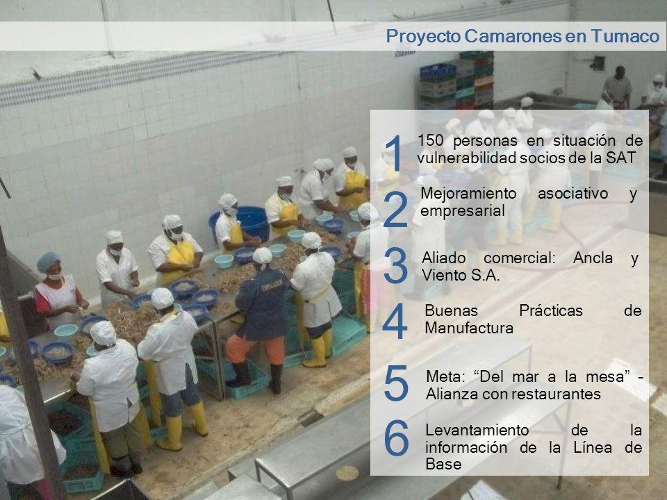 1 2 3 4 5 6 Proyecto Camarones en Tumaco