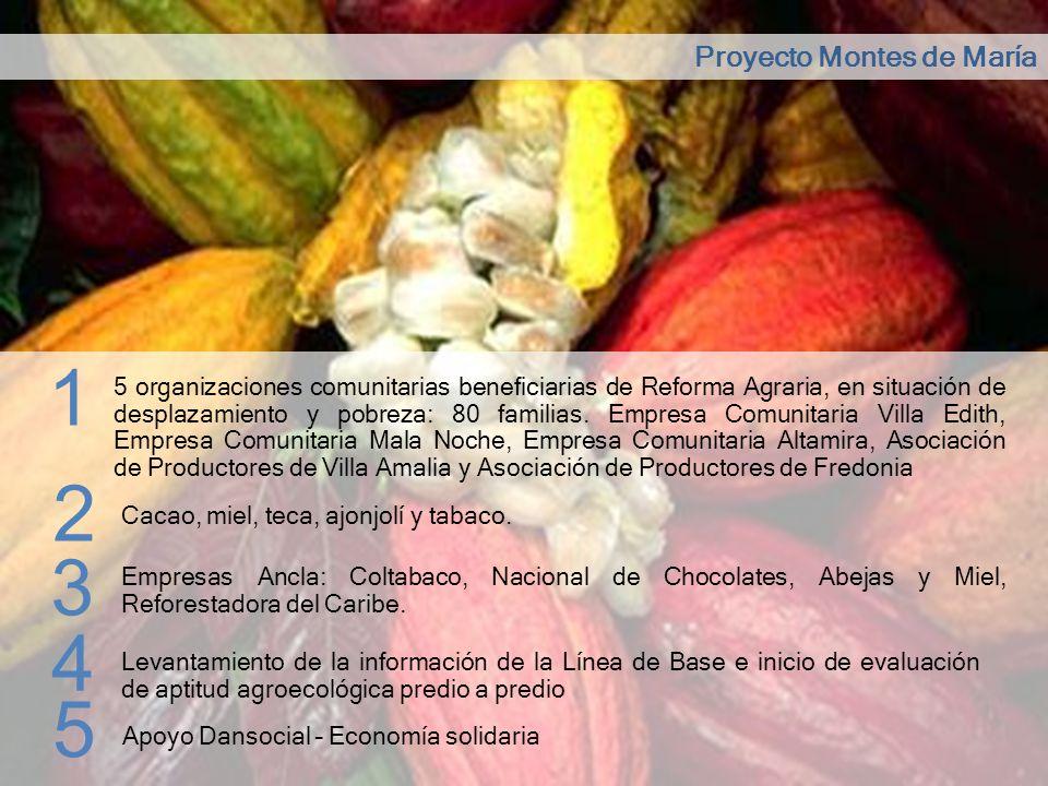 1 2 3 4 5 Proyecto Montes de María