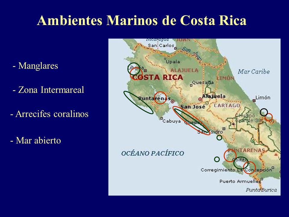 Ambientes Marinos de Costa Rica