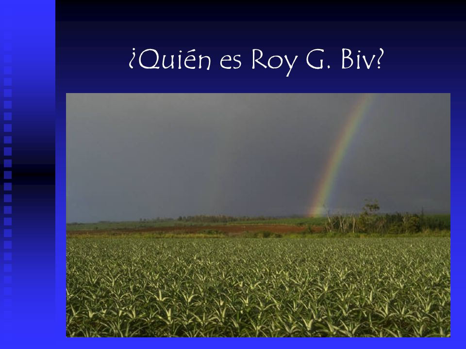¿Quién es Roy G. Biv