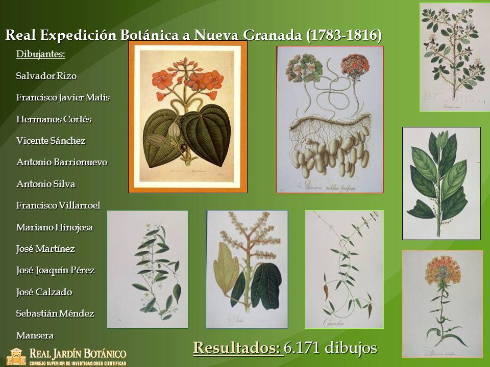 Real Expedición Botánica a Nueva Granada (1783-1816)