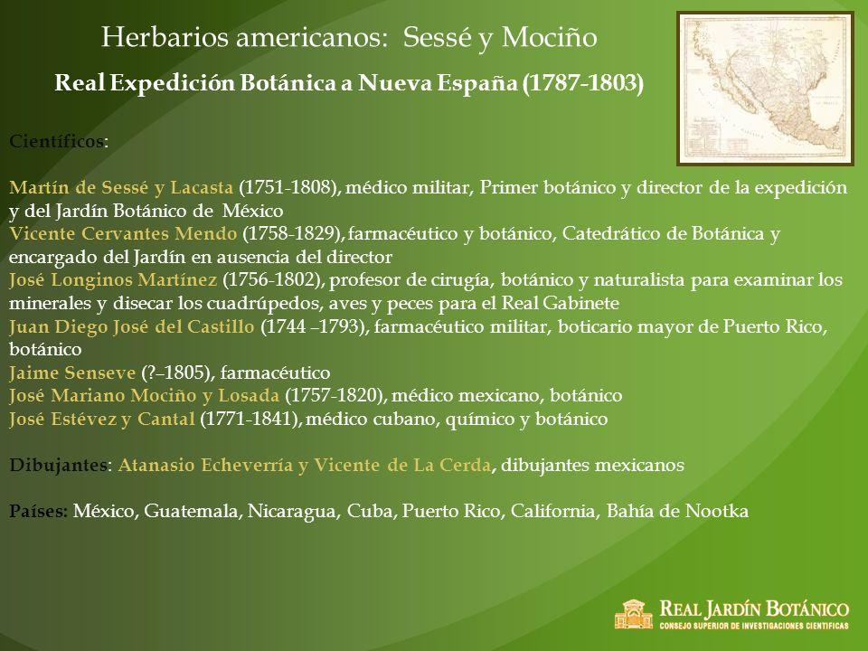 Real Expedición Botánica a Nueva España (1787-1803)
