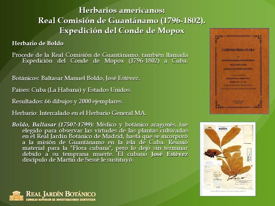 Herbarios americanos: Real Comisión de Guantánamo (1796-1802)