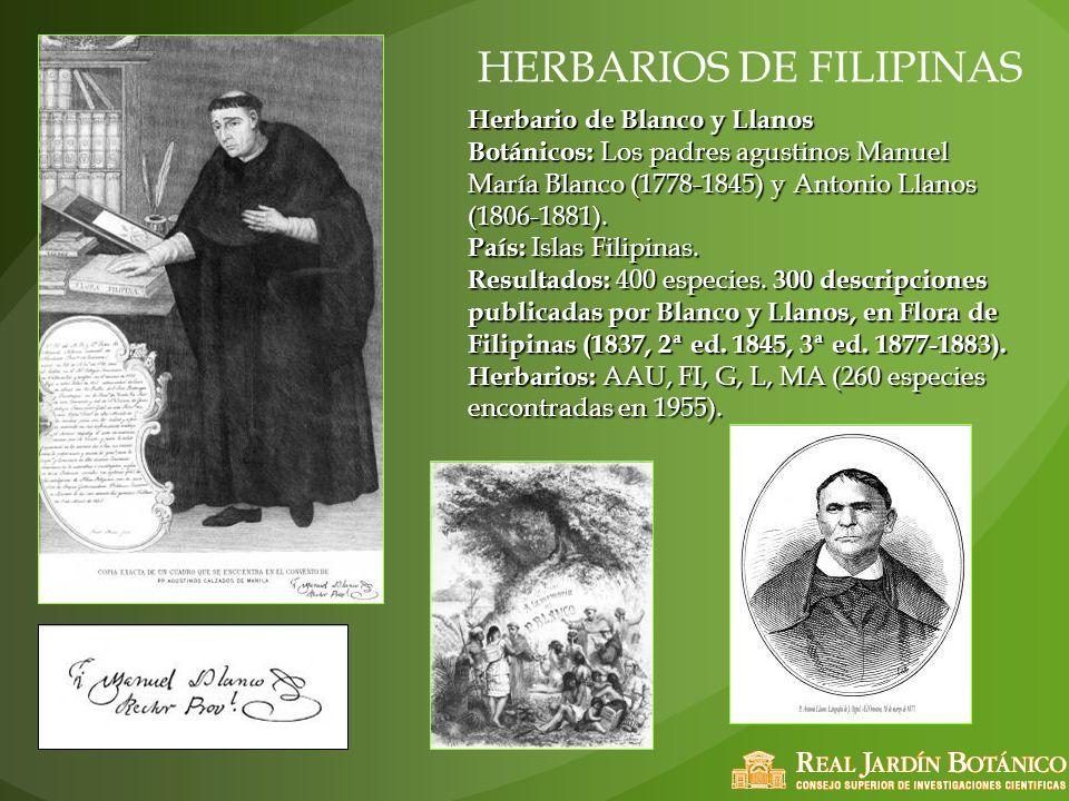 HERBARIOS DE FILIPINAS