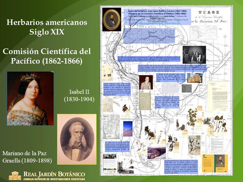 Herbarios americanos Siglo XIX Comisión Científica del Pacífico (1862-1866)