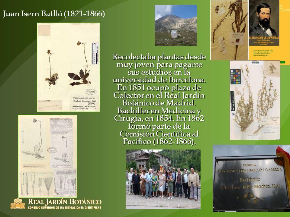 Juan Isern Batlló (1821-1866)