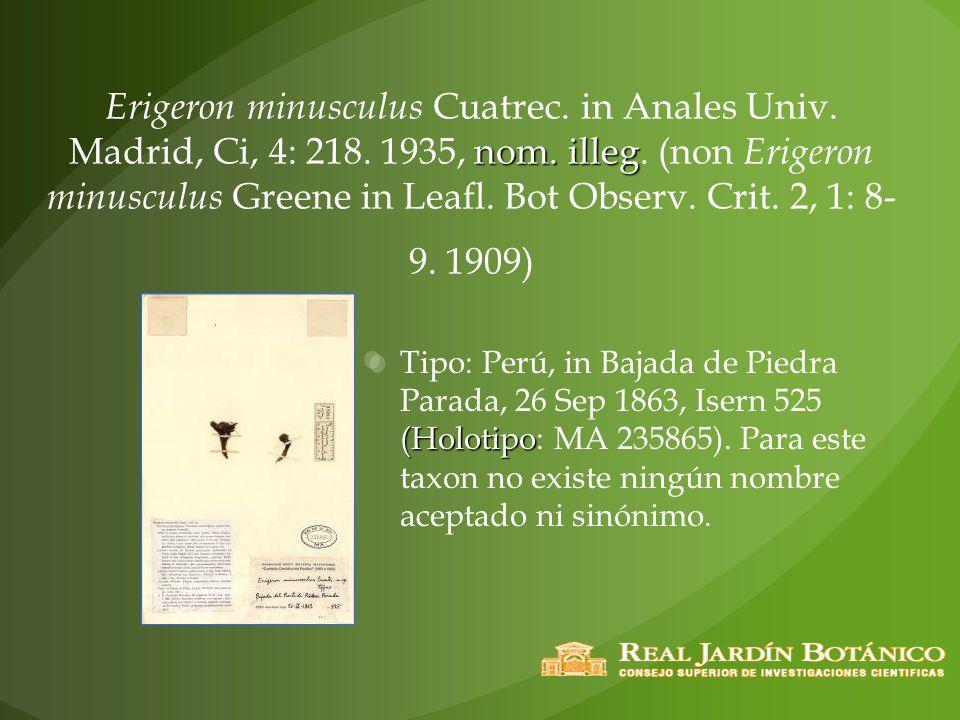 Erigeron minusculus Cuatrec. in Anales Univ. Madrid, Ci, 4: 218