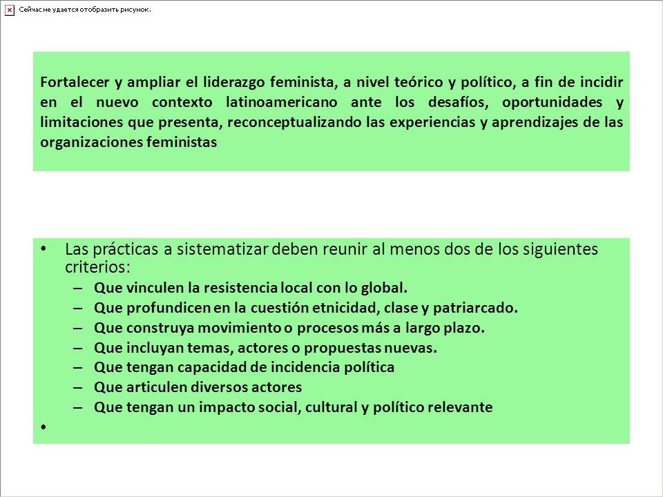 Fortalecer y ampliar el liderazgo feminista, a nivel teórico y político, a fin de incidir en el nuevo contexto latinoamericano ante los desafíos, oportunidades y limitaciones que presenta, reconceptualizando las experiencias y aprendizajes de las organizaciones feministas