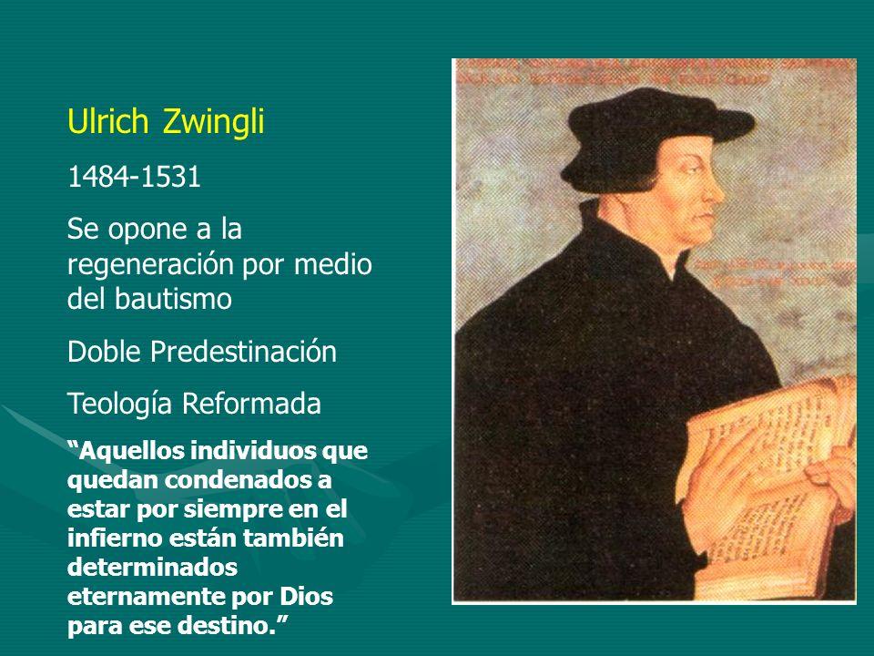 Ulrich Zwingli1484-1531. Se opone a la regeneración por medio del bautismo. Doble Predestinación. Teología Reformada.