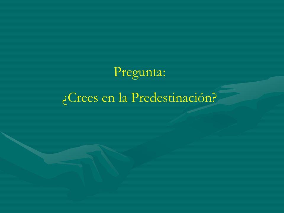 ¿Crees en la Predestinación