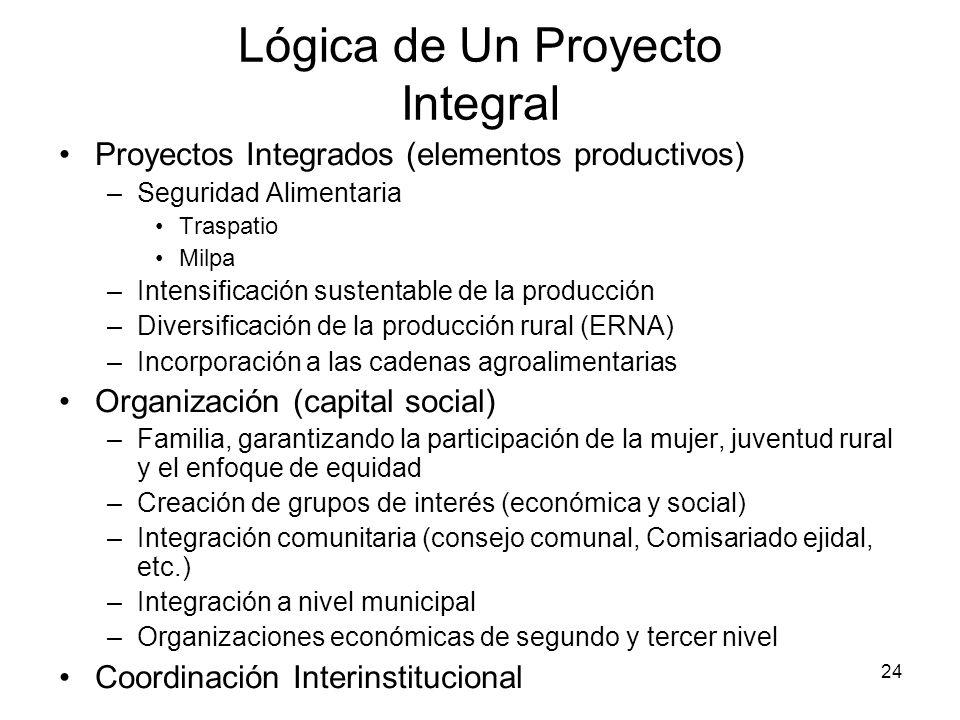 Lógica de Un Proyecto Integral