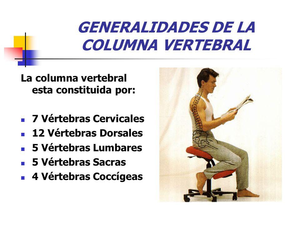 GENERALIDADES DE LA COLUMNA VERTEBRAL