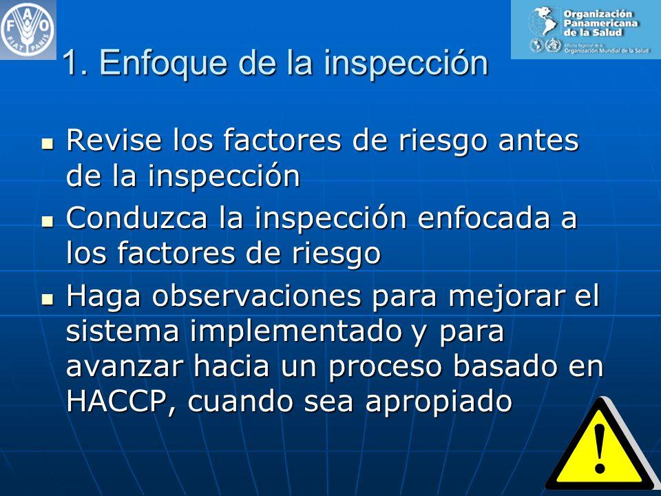 1. Enfoque de la inspección