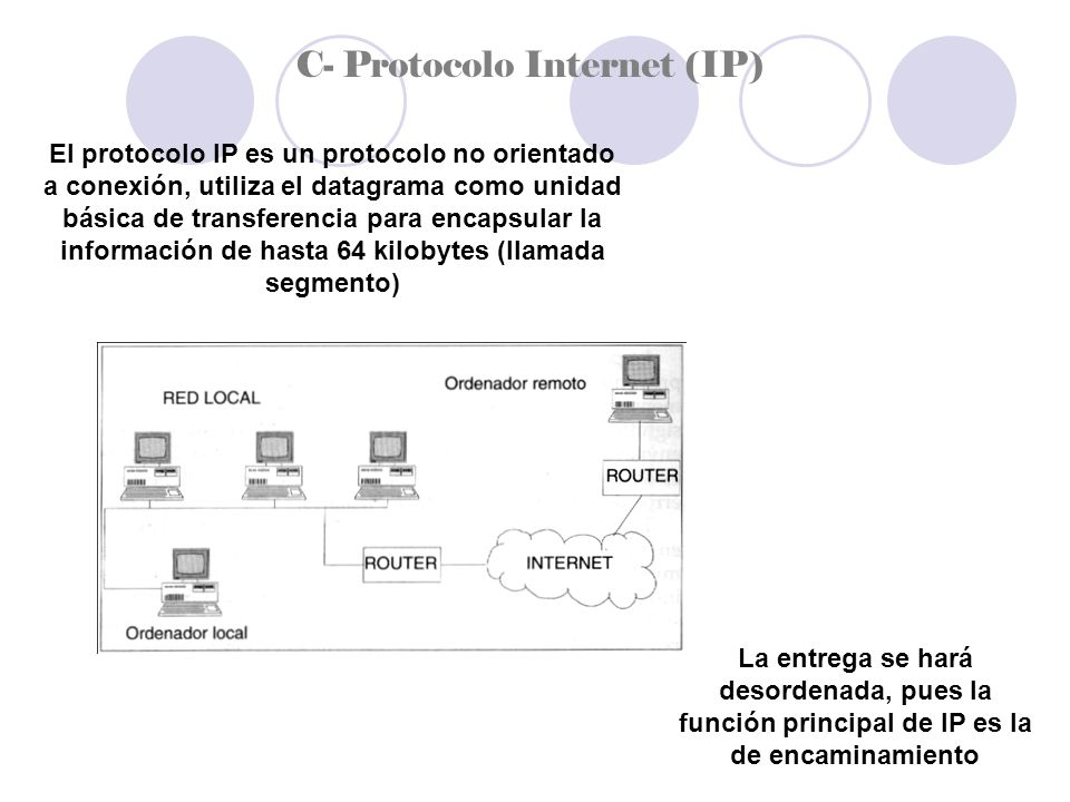 C- Protocolo Internet (IP)
