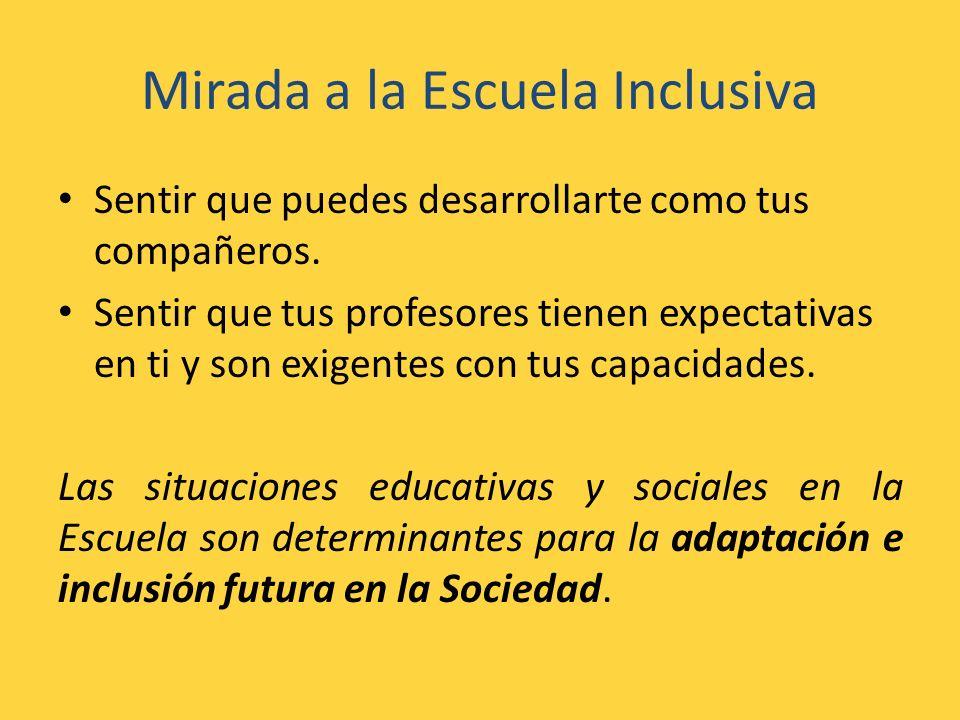 Mirada a la Escuela Inclusiva