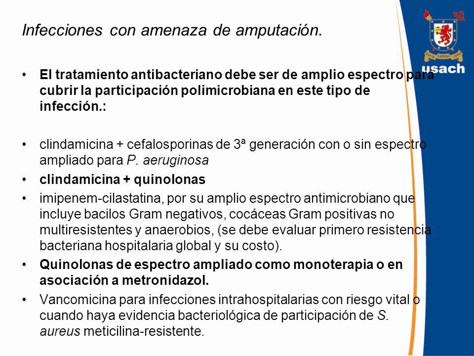 Universidad de santiago de chile ppt descargar for Tratamiento antibacteriano