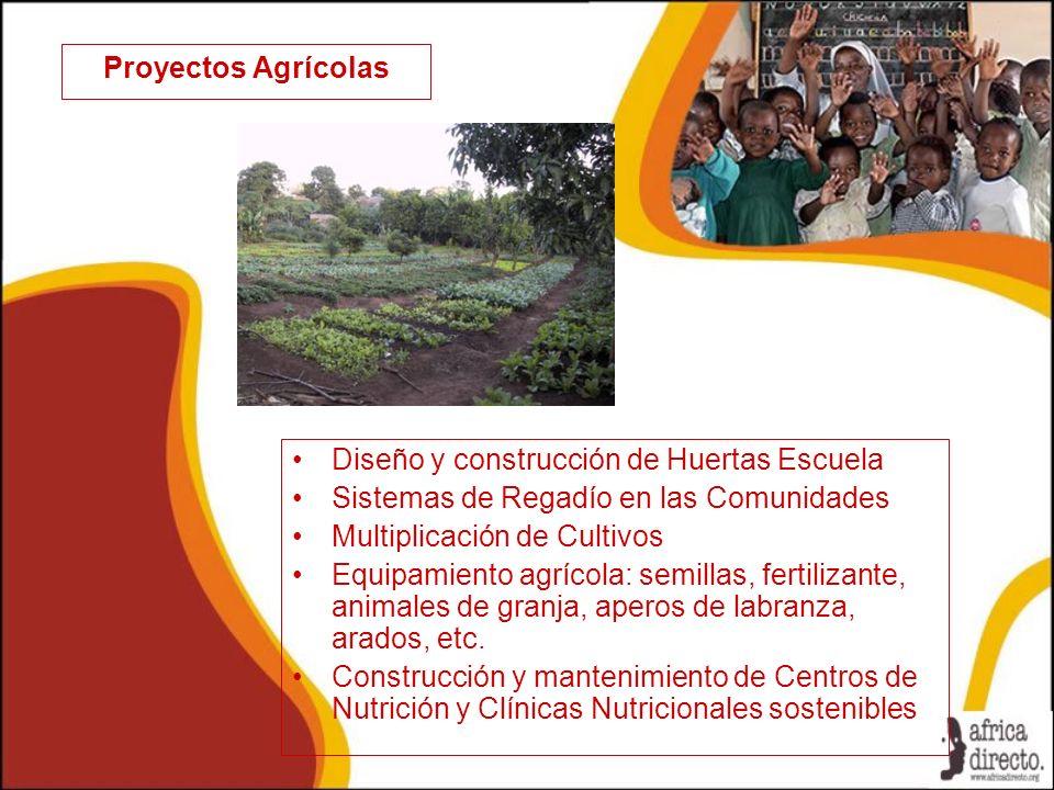 Proyectos Agrícolas Diseño y construcción de Huertas Escuela. Sistemas de Regadío en las Comunidades.