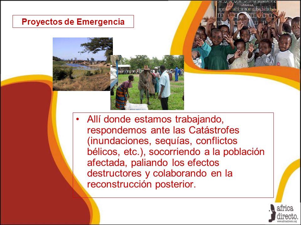 Proyectos de Emergencia