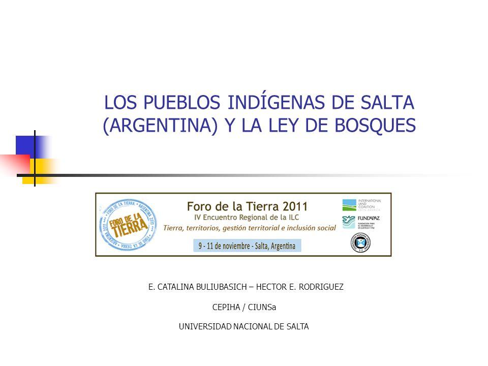 LOS PUEBLOS INDÍGENAS DE SALTA (ARGENTINA) Y LA LEY DE BOSQUES