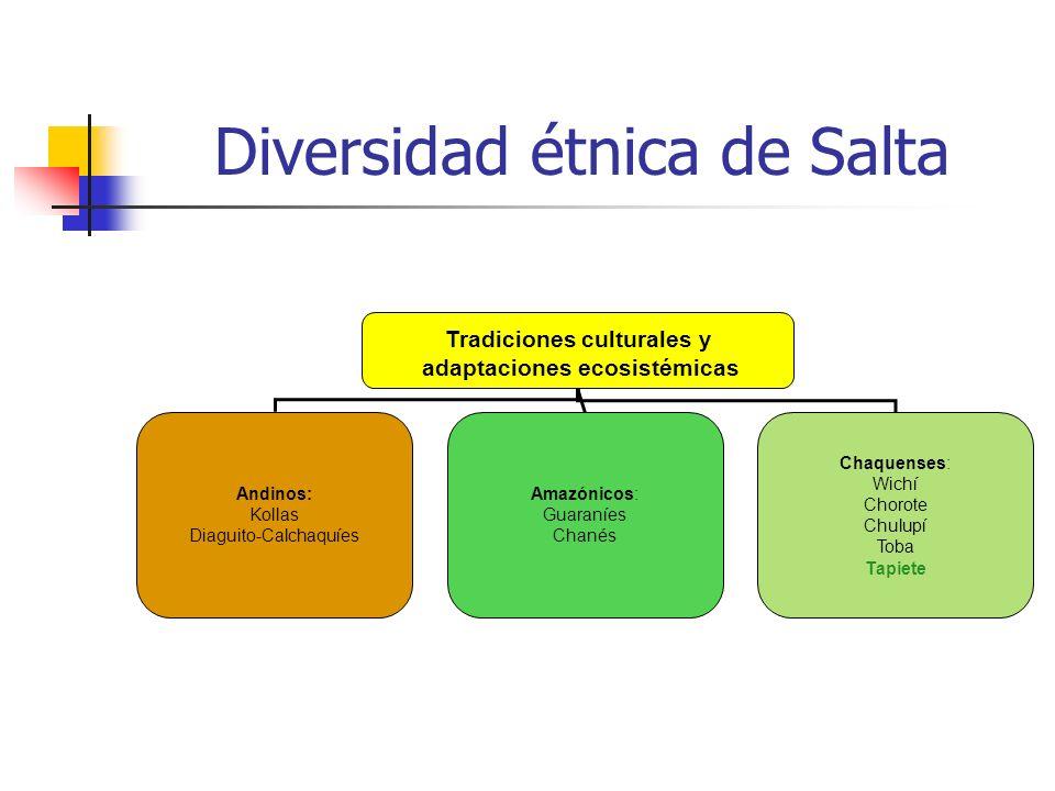 Diversidad étnica de Salta