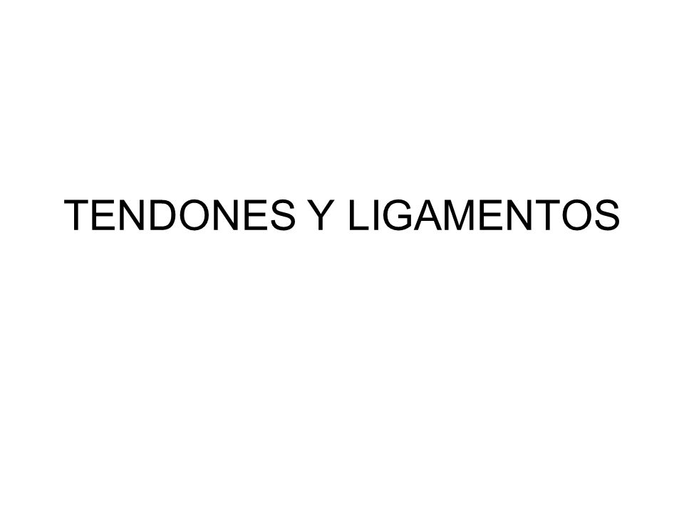 TENDONES Y LIGAMENTOS. - ppt video online descargar