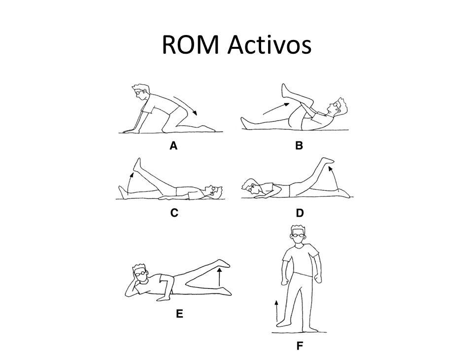 ROM Activos