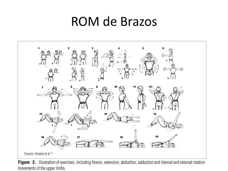 ROM de Brazos