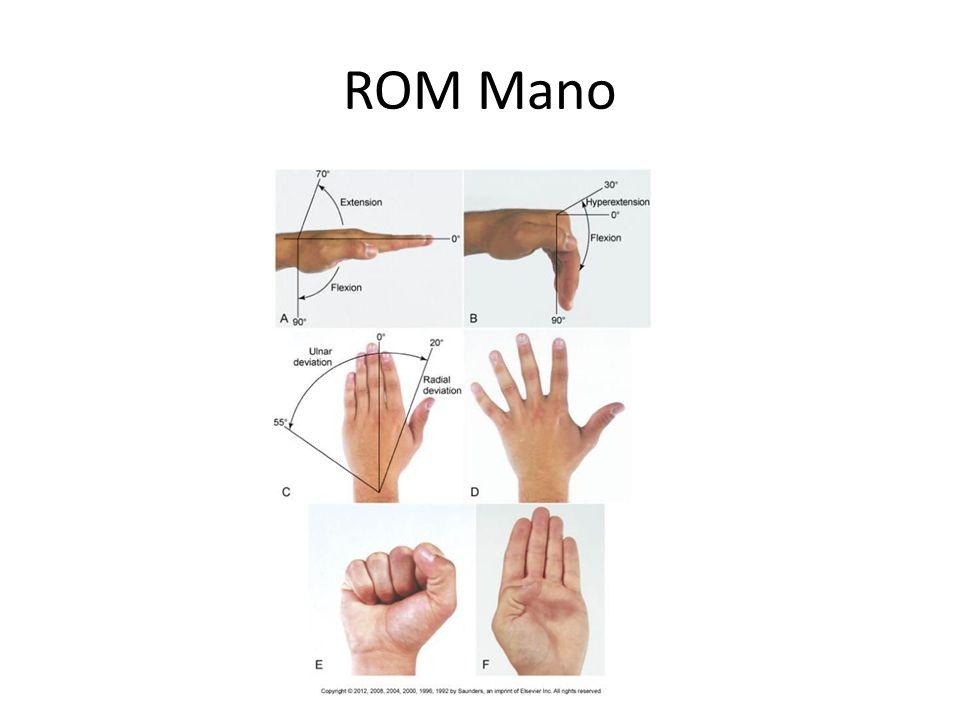 ROM Mano