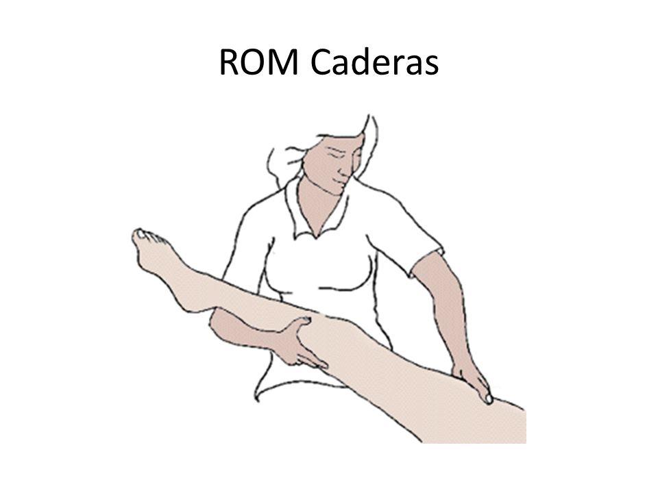 ROM Caderas