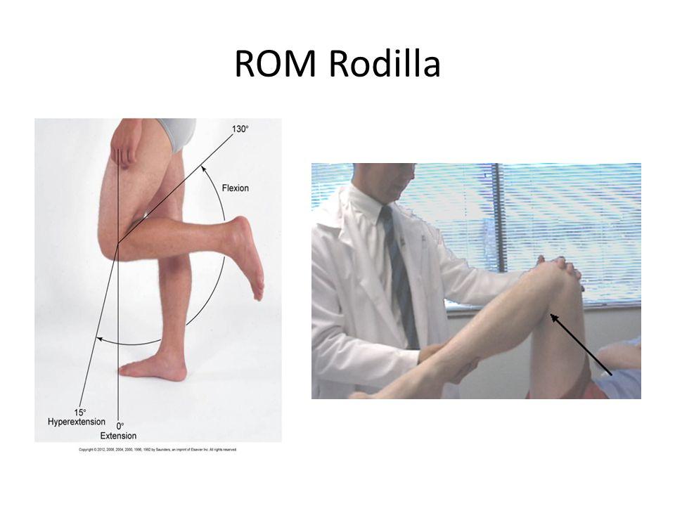 ROM Rodilla