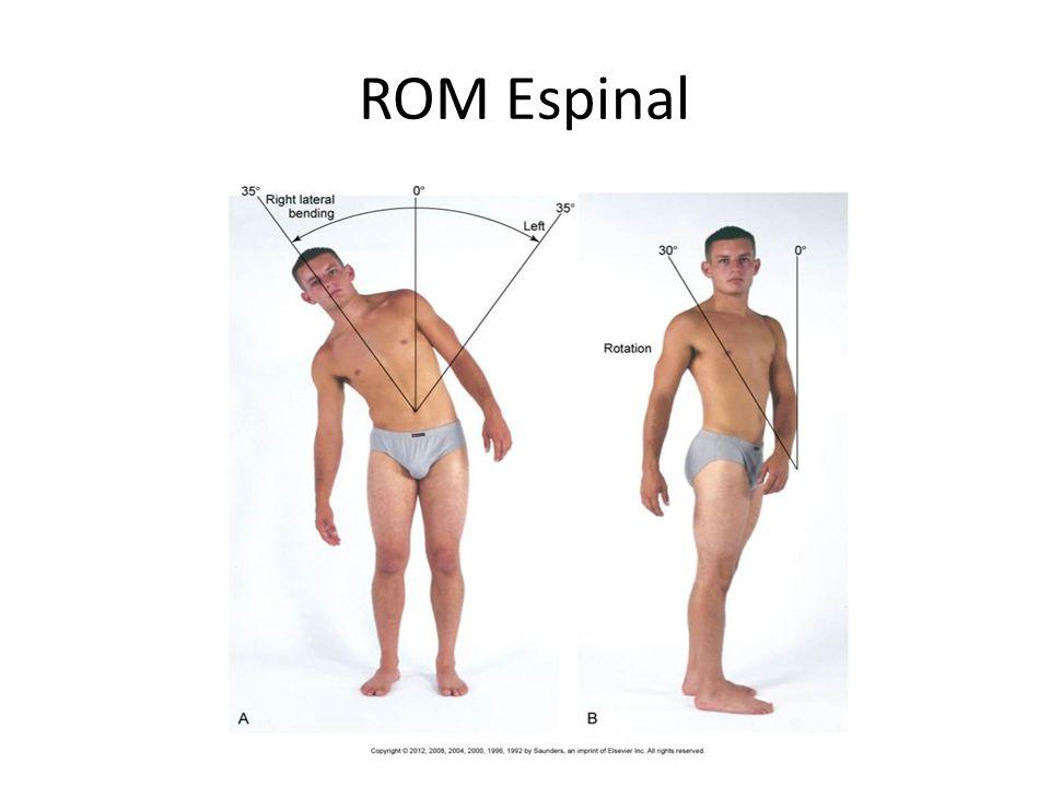ROM Espinal
