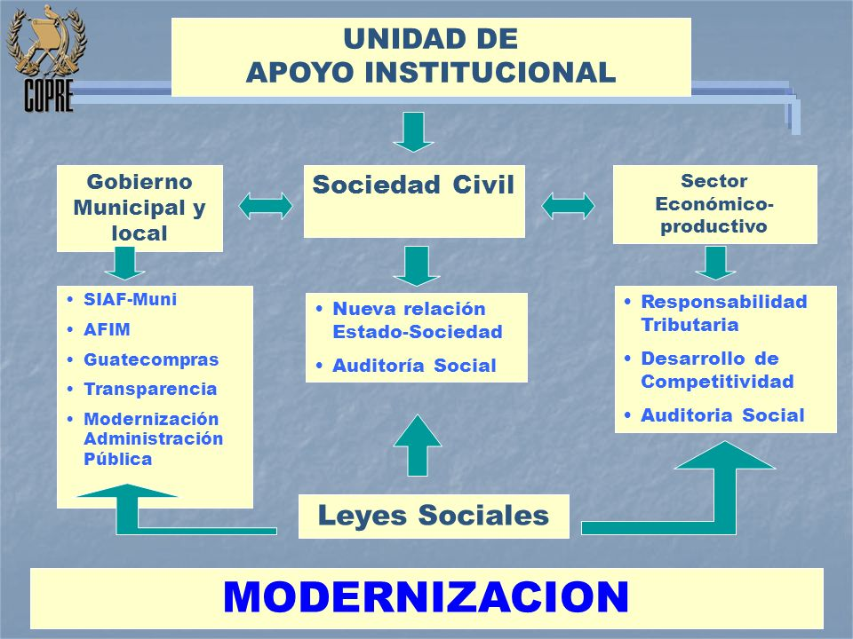 MODERNIZACION UNIDAD DE APOYO INSTITUCIONAL Leyes Sociales