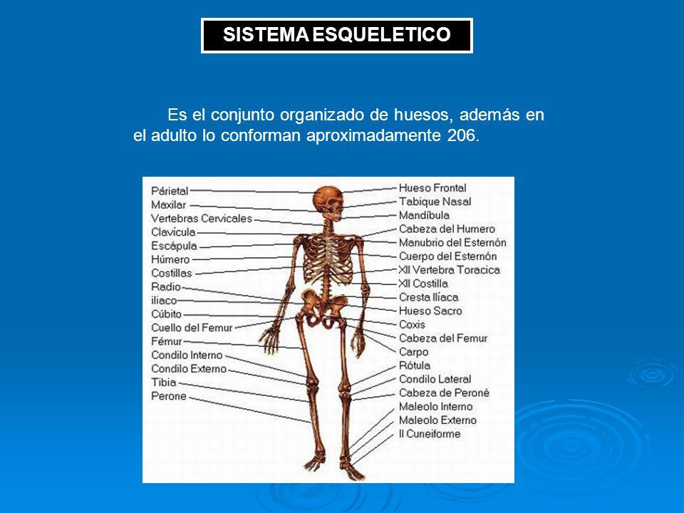 REPÚBLICA BOLIVARIANA DE VENEZUELA MINISTERIO DEL PODER POPULAR PARA ...