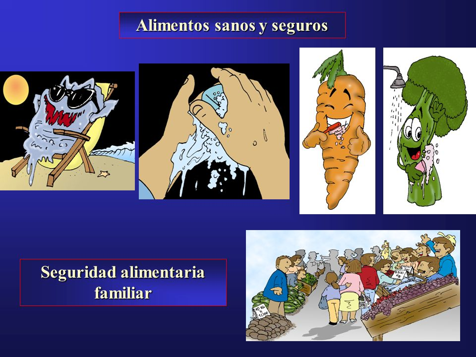 Alimentos sanos y seguros Seguridad alimentaria familiar