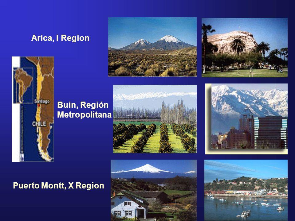 Arica, I Region Buin, Región Metropolitana Puerto Montt, X Region