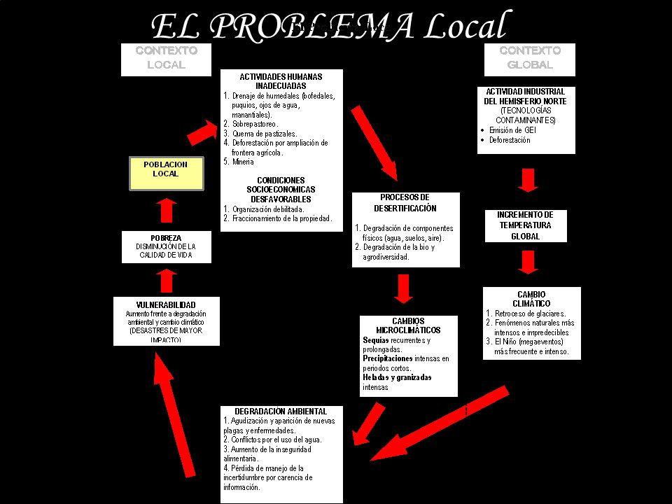 EL PROBLEMA Local