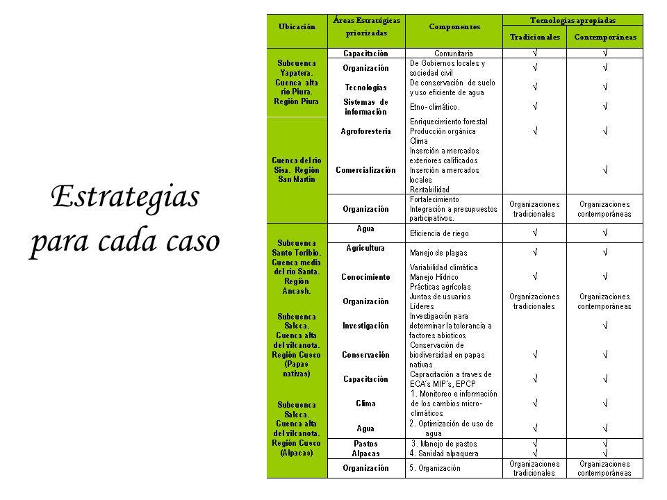 Estrategias para cada caso