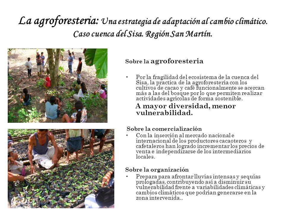 La agroforesteria: Una estrategia de adaptación al cambio climático