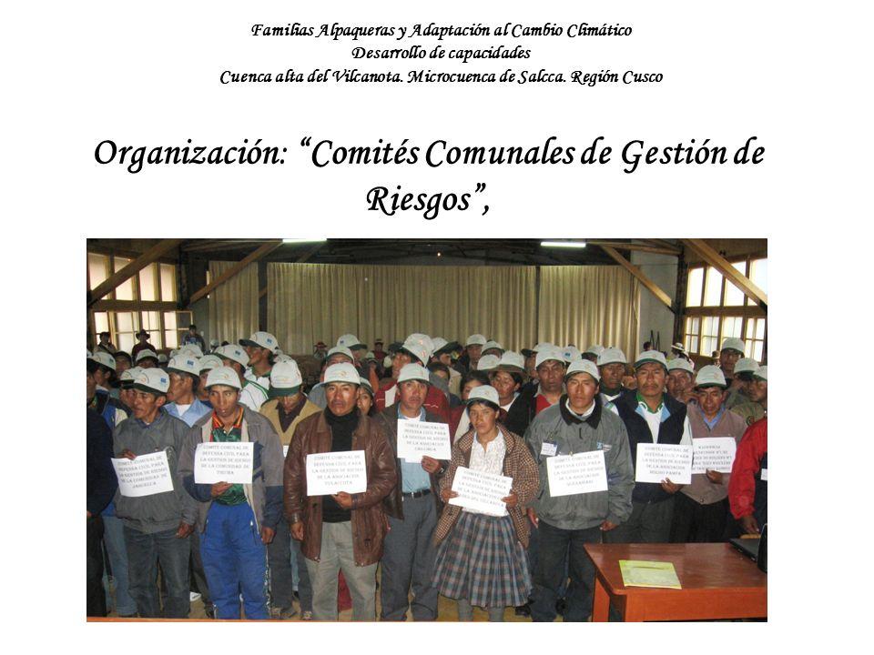 Organización: Comités Comunales de Gestión de Riesgos ,