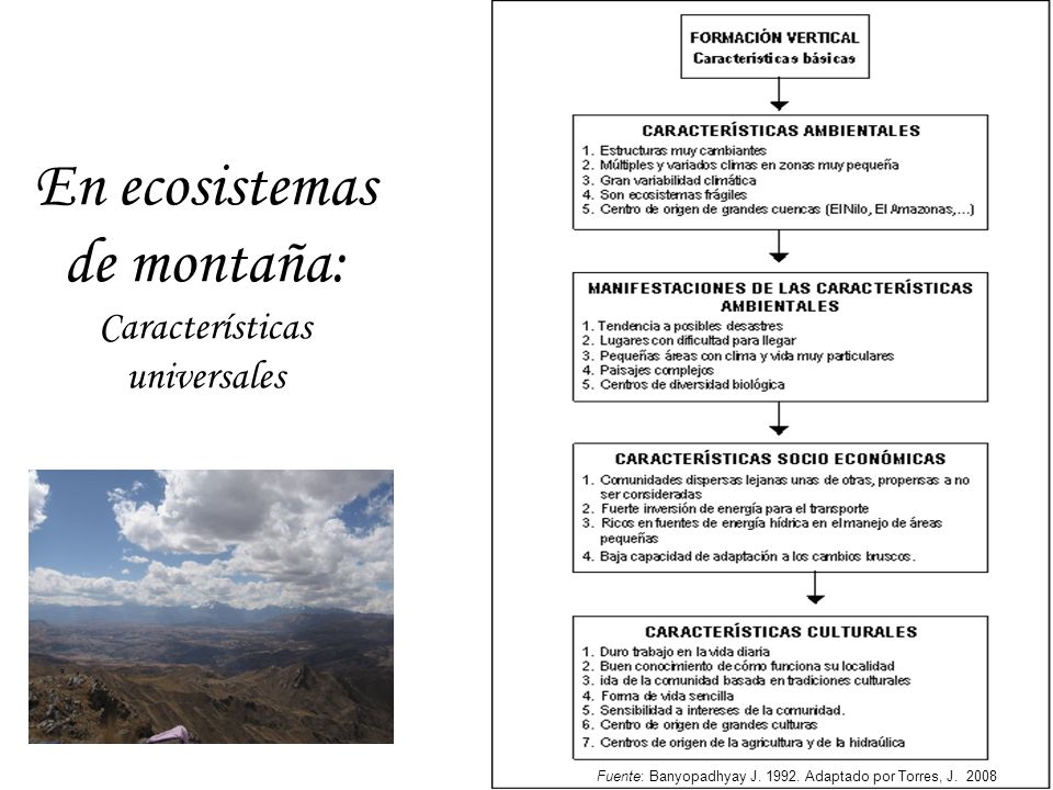 En ecosistemas de montaña: Características universales