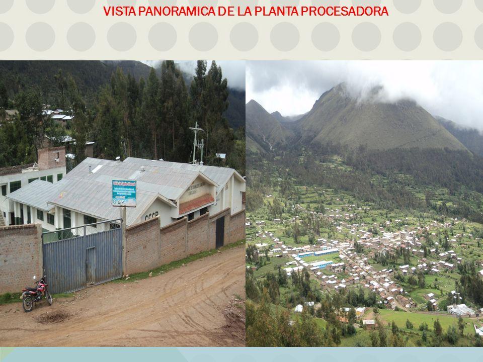 VISTA PANORAMICA DE LA PLANTA PROCESADORA